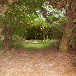 Gite de Kergoniou-Chemin malin
