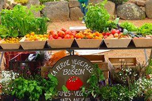 Ferme végétale de BoiseonPenvenan