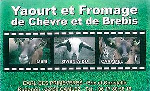 Fromage de chèvre