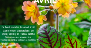 visuel-sites-tout-logos-avril-2020-115050-310-160